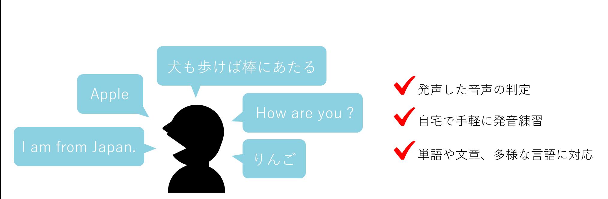 音声の認識と判定の特徴。発生した音声の判定。自宅で気軽に発音練習。単語や文章、多様な言語に対応。